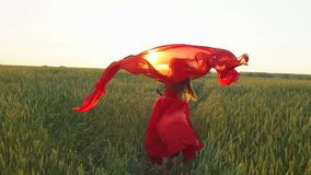 Happy young beautiful woman in red dress with scarf running on wheat field in sunset summer, Freedom health happiness. Happy young beautiful woman in red dress stock video footage