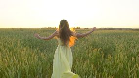 Happy young beautiful woman in yellow dress running on wheat field in sunset summer, Freedom health happiness concept. Happy young beautiful woman in yellow stock video