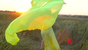 Happy young beautiful woman in yellow dress running on wheat field in sunset summer, Freedom health happiness concept stock video