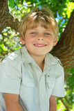 Happy young boy. In a tree Stock Images