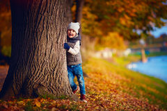Happy young boy having fun in autumn park stock images