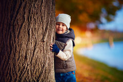 Happy young boy having fun in autumn park royalty free stock image