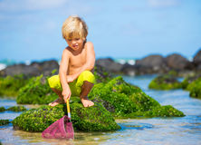 Happy Young boy having fun at the beach Stock Images