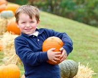Happy young boy picking a pumpkin. For Halloween Stock Images