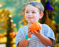 Happy young boy picking a pumpkin. For Halloween Stock Photo