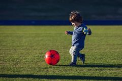 Happy young boy playing with red ball with his mother on green grass Stock Image