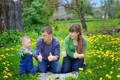 Happy young boy running on meadow with his parents.  Stock Photography