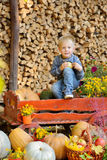 Happy young boy sitting with a pumpkins. Autumn. Happy young boy picking a pumpkin for Halloween. Little kid sitting on cart. Autumn harvest Stock Images