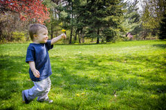Happy Young Boy Walking in a Park Holding Out a Dandelion Flower. A smiling young boy walks in a park holding out a dandelion flower.  Room for copy space Royalty Free Stock Photos