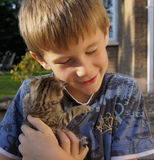 Happy young boy with young pet kitten. A young boy with his tiny pet kitten on a beautiful summer's day Royalty Free Stock Images