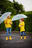 Happy young boys, brothers with umbrellas and rain coats and boots walking in spring park at rainy day royalty free stock images