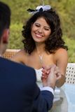 Happy young bride smiling Stock Photos