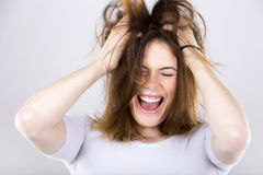 Happy young brunette Stock Photography