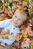 Happy Young Child Jumping in Pile of Fall Leaves Stock Photography