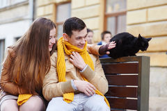 Happy young couple with a cat on a bench in city Royalty Free Stock Photo