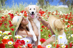 Happy young couple with dog Royalty Free Stock Images
