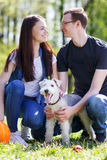 Happy young couple and  dog. Happy young couple and their dog at the park Royalty Free Stock Image