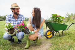 Happy young couple gardening together Royalty Free Stock Photos