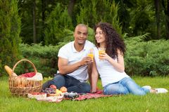 Happy young couple having a picnic Royalty Free Stock Photo