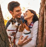 Happy young couple holding dogs in park Stock Photos