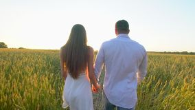 Happy young couple holding hands and walking through wheat field at summer sunset, having fun outdoors. Love, summer stock footage