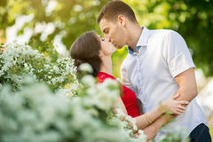 Happy young couple kissing in park Stock Photos