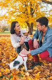 Happy young couple playing with dogs outdoors Royalty Free Stock Photo