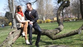 Couple relaxing in park. Happy young couple relaxing outdoor, woman and man walking in park, sitting down on tree talking stock video