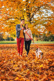 Happy young couple with two cute dogs walking in park Stock Image