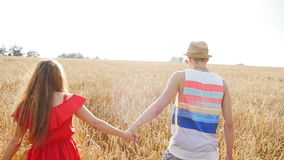 Happy young couple walking together through wheat field stock video
