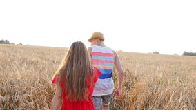 Happy young couple walking together through wheat field stock video footage