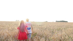 Happy young couple walking together through wheat field stock footage