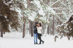 Happy Young Couple in Winter Park having fun Royalty Free Stock Image