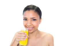 Happy young dark haired model drinking orange juice Royalty Free Stock Images