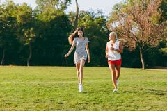 Mom with daughter and dogs are walking in the park with a flying disk royalty free stock images