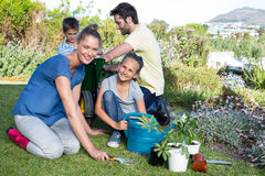 Happy young family gardening together royalty free stock photos
