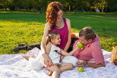 Happy young family having picnic at meadow. At summer day Royalty Free Stock Photos