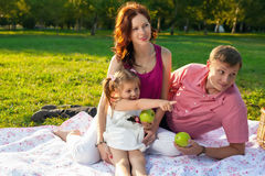 Happy young family having picnic at meadow Stock Image