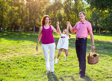 Happy young family having picnic at meadow. At summer day. Parents hold their child's for hands Royalty Free Stock Photography