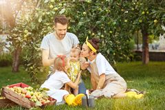 The happy young family during picking apples in a garden outdoors Royalty Free Stock Image