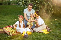 The happy young family during picking apples in a garden outdoors Royalty Free Stock Photos