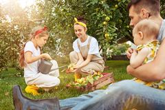 The happy young family during picking apples in a garden outdoors Stock Image