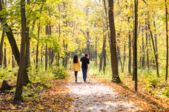 Happy young family walking down the road outside in autumn nature. Stock Photos
