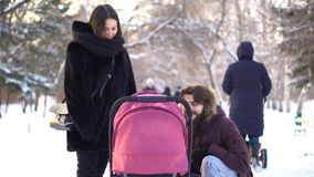 Happy, young family walking in a winter park, mom, dad and baby in stroller. Smiling parents leaning over pink stroller stock photos