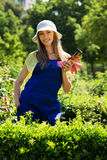 Happy young female in uniform working with roses Royalty Free Stock Photography