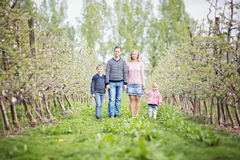 Happy young four member family standing together outdoors in orc Royalty Free Stock Photography