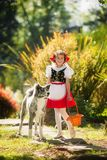 A happy young girl dressed as a fairy tale character and a Japanese Akita walk in the summer stock photography