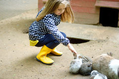 Happy young girl with father petting baby rabbit. At farm Stock Photography