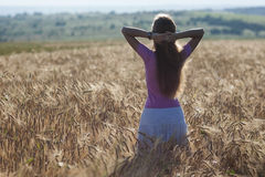 Happy young girl in golden wheat field. Young woman enjoying nat Stock Image