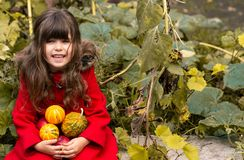 Happy young girl picking a pumpkin for Halloween. Autumn activities for children. Happy child playing in autumn park stock images